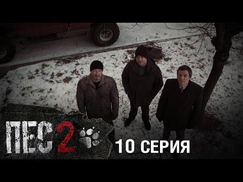 Сериал Пес - 2 сезон - 10 серия