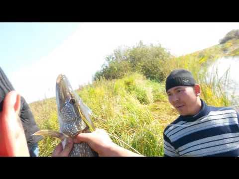 весенняя рыбалка в астане