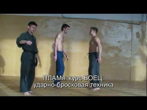 ПЛАМя - рукопашный бой - история бокса