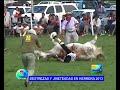 DESTREZAS Y JINETEADAS EN HERRERA 2013