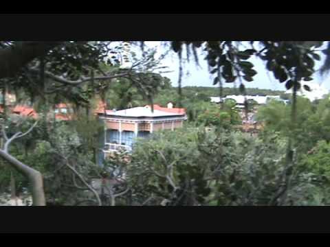 Swiss Family Tree House at Disney World