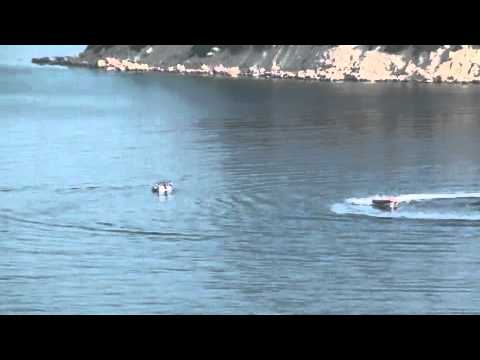 Acheter bateau semi rigide