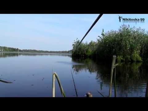 рыбалка на шатурских карьерах