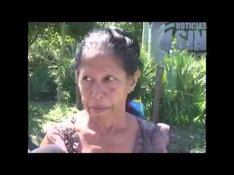 Plaga de gusanos arropa a la comunidad del Puñal en Santiago