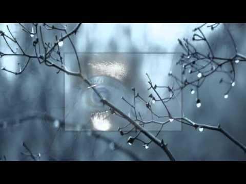 Steve Miller - Winter Time