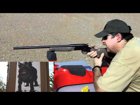 Rossi 20 gauge Slug Shooting