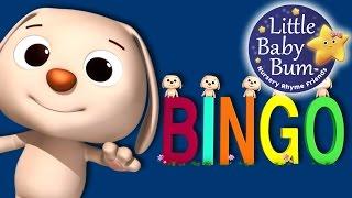 Little Baby Bum   BINGO Part 2   Nursery Rhymes for Babies   Songs for Kids