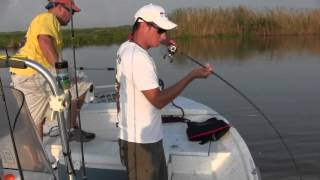Dularge Redfish Slam!(1/2)