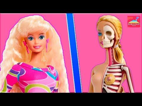 10 фактов о кукле Барби / 10 фактов о моем теле ?