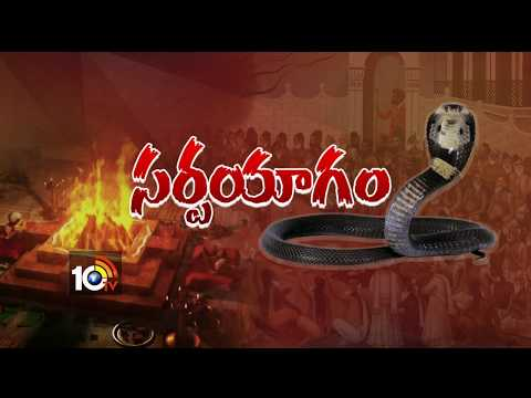 పాములు పగబడుతాయా ?..| Special Discussion On Snakes Bits | #SnakesRevenge | 10TV