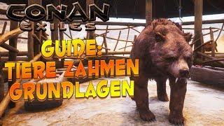CONAN EXILES GUIDE: Tiere / Pets zähmen - Grundlagen! ⭐ Anfängerguide