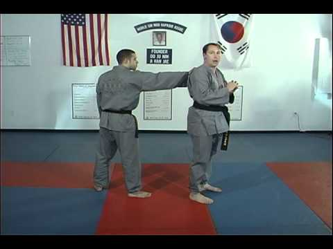 Hapkido Rear Collar Grab Techniques 1 thru 4, Ji Han Jae Image 1