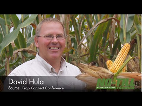 From the Desk of Laura Allen: David Hula's 5 Tips for High-Yielding Corn