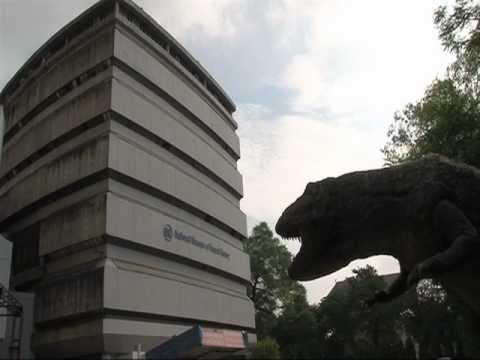 National Museum Of Natural History, New Delhi