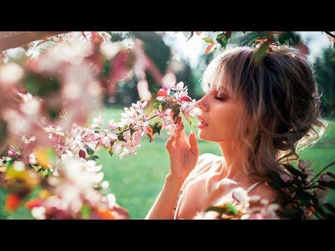 Классная песня!! Послушайте!! Весна - Алексей Башкиров