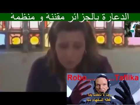 الرد على المخنث الجزائري الذي يهاجم تعليقات المغاربة على اليوتوب thumbnail