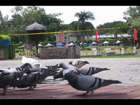 Ang Kuwentong Luneta Documentary