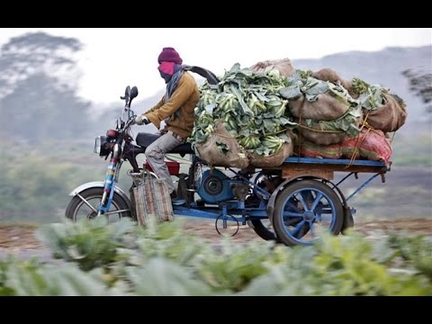 Transport of Agriculture Produce in India