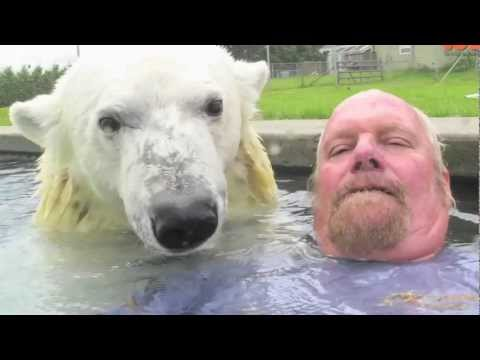 The Only Man In The World Who Can Swim With A Polar Bear: Grizzly Man video