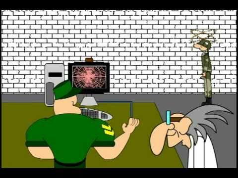como nace el internet