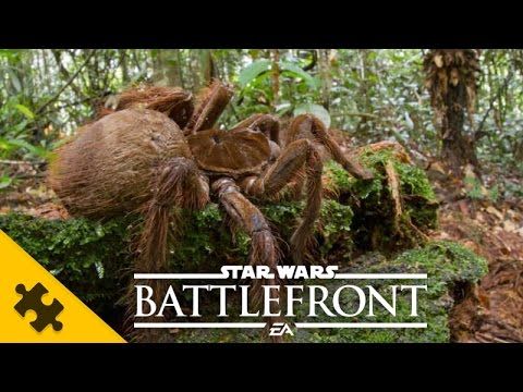 ПАСХАЛКИ: ОГРОМНЫЙ ПАУК - Star Wars Battlefront (Easter Eggs)