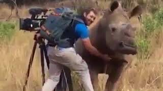 Brave photograph getting close to a huge Rhino