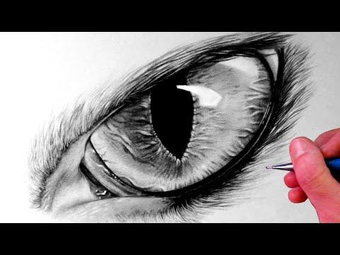 Видео как нарисовать глаза кота