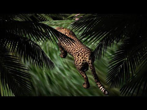 Download  Mac Miller - Woods Gratis, download lagu terbaru