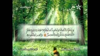 Recitation Of The Sheikh Rachid Belasheyyah تلاوة مميزة للمقرئ رشيد بلعشية الحزب 49