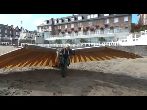 Birdy human powered ornithopter