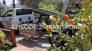 1973 VW Super Beetle Restoration: Episode 2 Transport