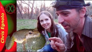 How to Find Spring Peepers - With Bonus Find! (Herping)