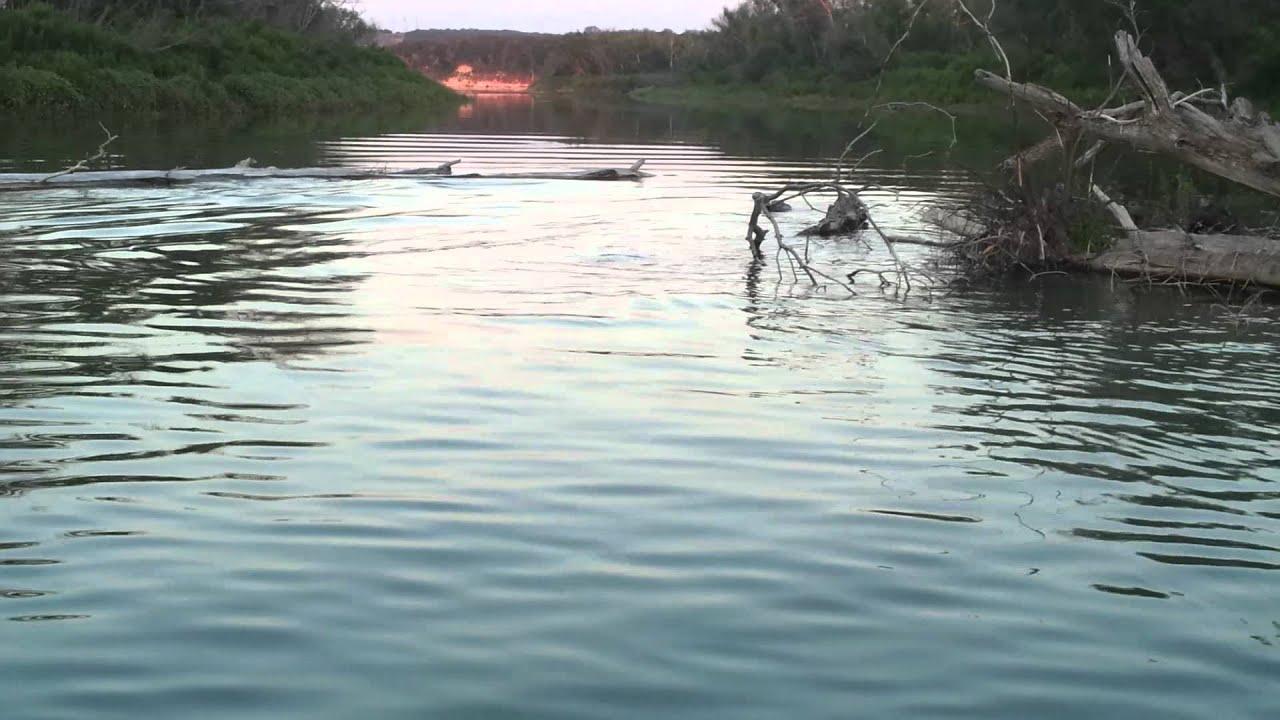 Alligator in stillhouse lake youtube for Belton lake fishing