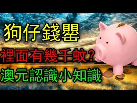 【ポケモンGO攻略動画】在澳洲冇錢交房租啊啊啊啊  『WillWill Life』  – 長さ: 10:52。