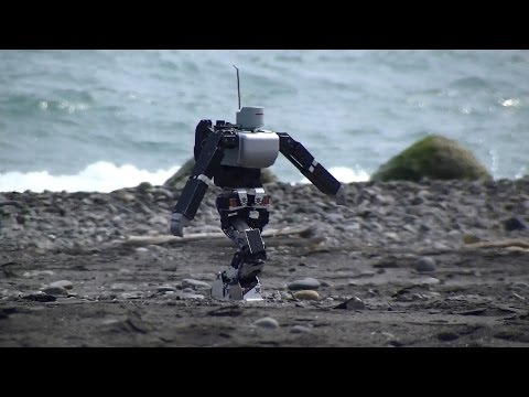 砂浜を歩くヒューマノイドロボット(The humanoid robot which walks the sandy beach.)