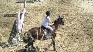 download lagu Concours Orloff 3 Du 25 Mars 2012 171 gratis