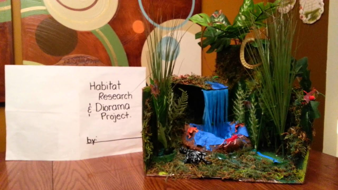 Watch on 3rd Grade Science Project Ideas