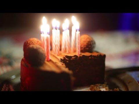 Видео кот поет с днем рождения