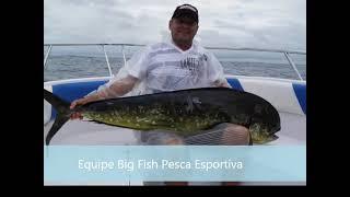 DOURADO GIGANTE DE 19.950KG PESCADOR GERALDO, PESCA OCEÂNICA, FLORIPA