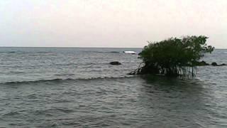La Guancha - Ponce - Puerto Rico - Video CXXX