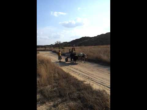 video-2011-10-20-16-08-16_2.mp4