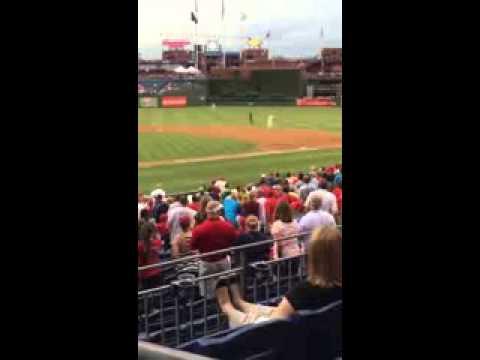 gato irrumpe en medio de un juego de beisbol mlb