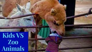 Cutest Kids VS Zoo Animals Ultimate Funny Compilation 2018