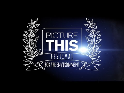 Picture This Festival - Sony Pictures Television Networks Latin America