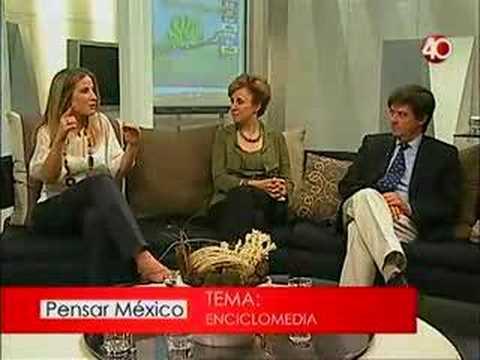 Debate Proyecto 40 Enciclomedia (1)