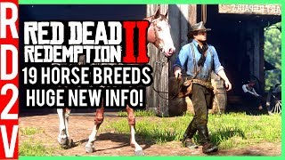Red Dead Redemption 2 - 19 Horse Breeds, Horse Customization, Hunting & Fishing!