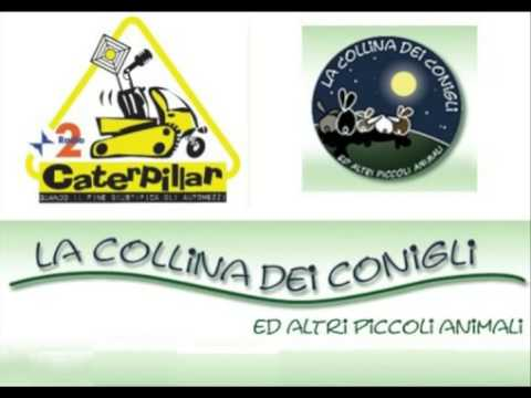 La Collina dei Conigli a Caterpillar Music Videos