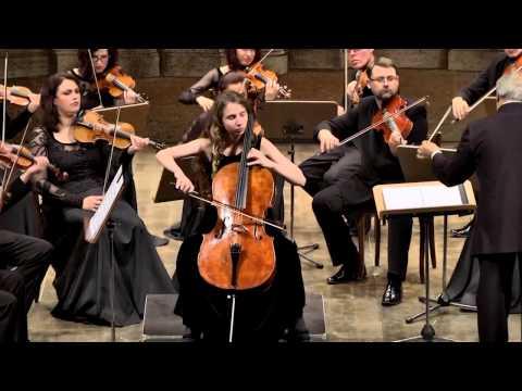 виолончелист поппера