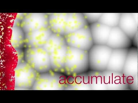Nanoparticle Transport in Tumors - Full Version