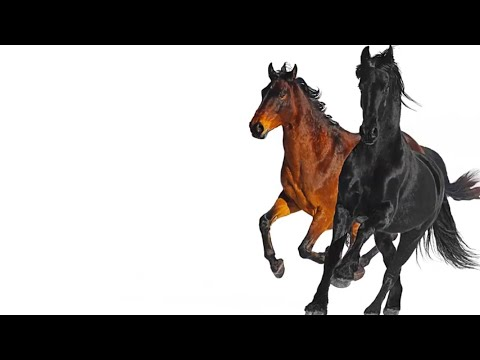 Old Town Road Remix Feat. Billy Ray Cyrus 1 Hour Version